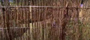 Brush-fencing