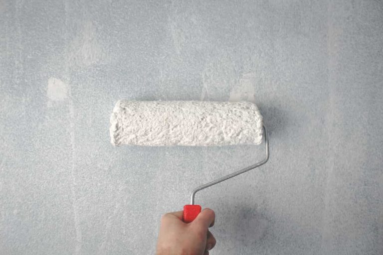 House Painting Wall Roller