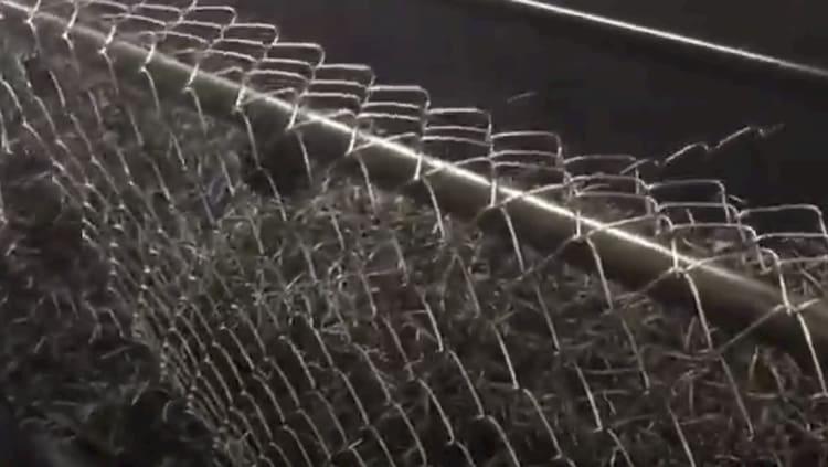 Mesh fencing in Australia