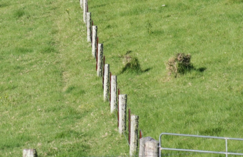 Wood & barbed wire fencing on a paddock