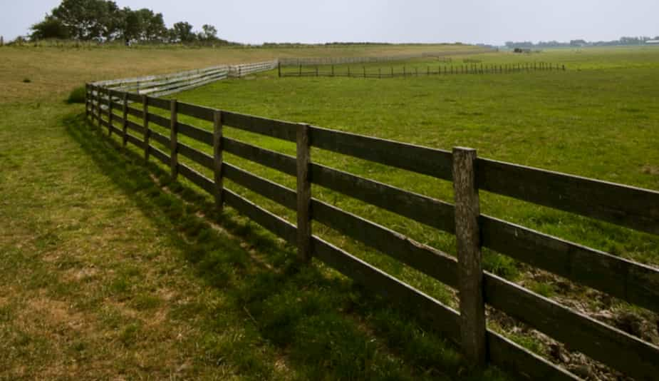 Wood farm fencing on a Paddock in Australia